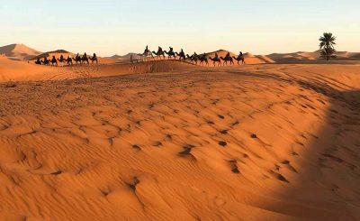 desert trip Erg Chebbi