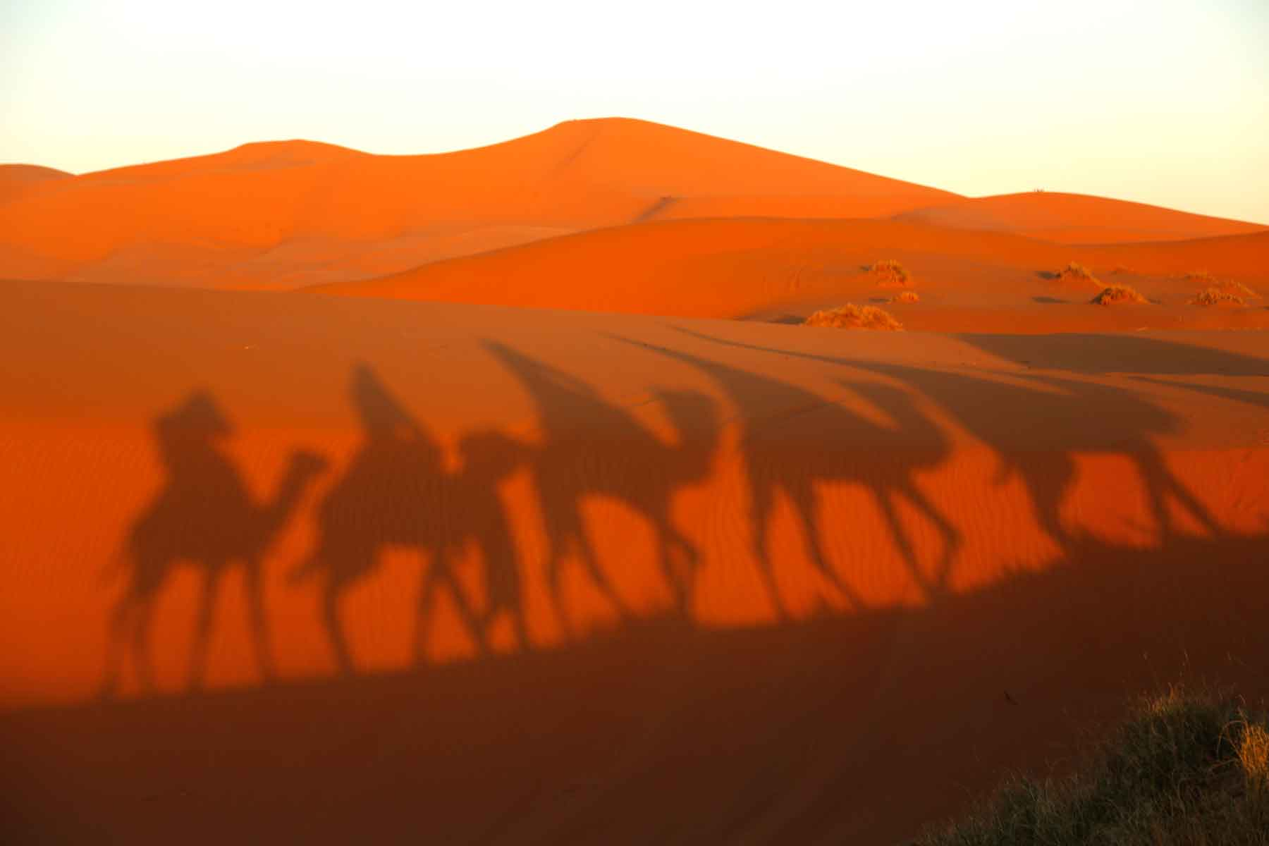 Morocco Sahara Desert Tours from Marrakech