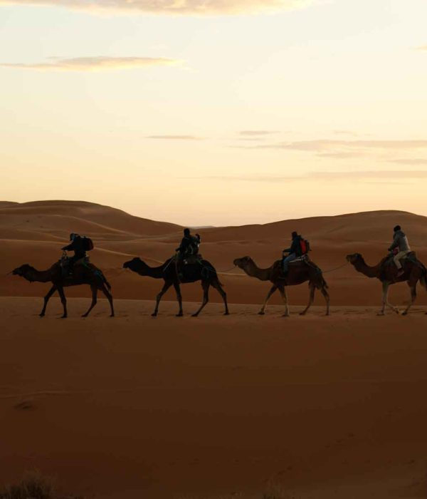 tours from marrakech - Morocco Sahara Desert Tours from Marrakech