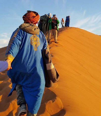 Sahara Desert Trips